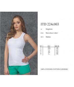 ITD224c003 Basic 2